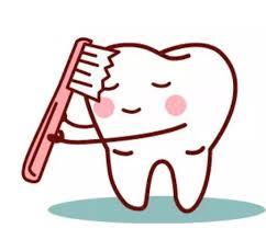 缺牙一定要植牙?植牙權威告訴你不可不知的真相